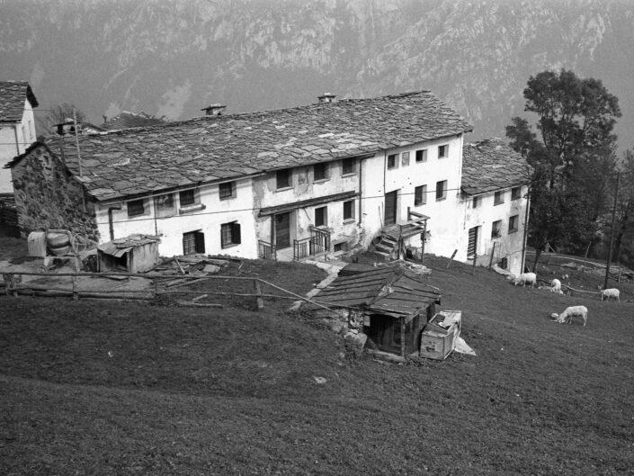 Fondo Carlo Tancredi Olmo Valle del Drogo SO 1981 25 scaled