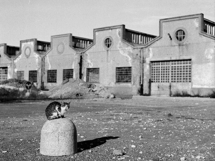 Fondo Claudio Argentiero Castellanza ex Ditta Cantoni 1996 2