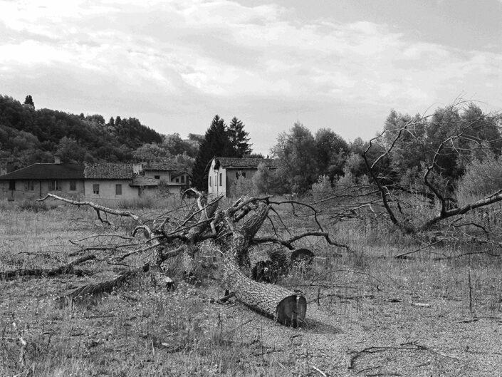 Fondo Claudio Argentiero Vedano Olona localita Le Fontanelle 1997