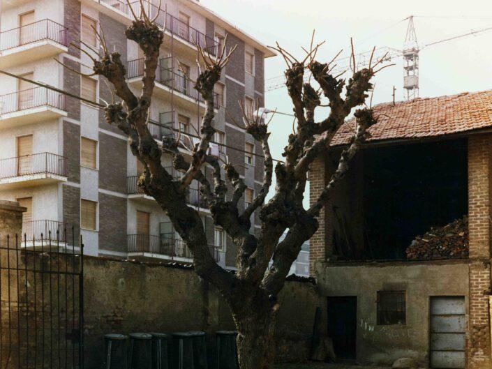 Fondo Archivio Storico Castellanza Cascinone in via Col di Lana 1977 scaled