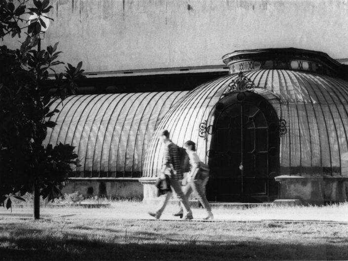 Fondo Maurizio Sbicego Castellanza Parco Comunale Il serrone e la coppietta 1997