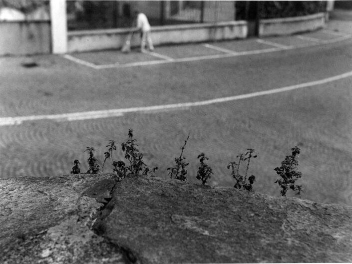 Fondo Maurizio Sbicego Castellanza Piazza Soldini 1997