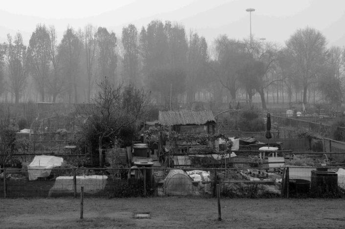 Fondo Virgilio Carnisio Milano Orti in via Chiodi 2016 scaled