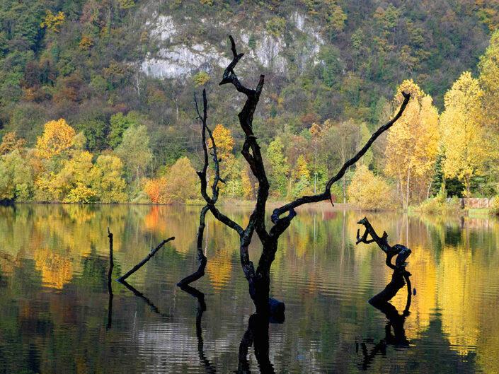 Fondo Afi - Ghirla - Veduta autunnale sul lago - Riflessi - Foto Luigi Meroni e Sergio Luzzini - 2008