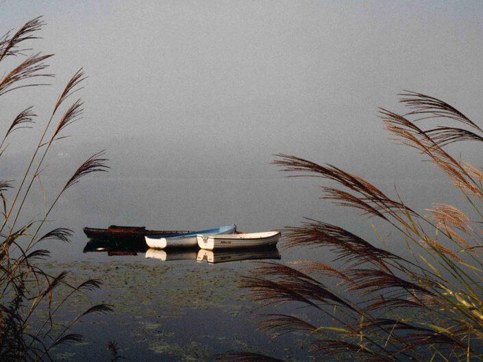 Fondo Afi - Lago di Comabbio - Corgeno - Foto Franco Margnini - 1993