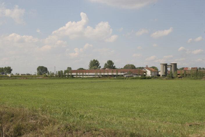 Fondo Roberto Bosio - Parco Agricolo Sud Milano - Mediglia - Cascina Maiocca - Agosto 2006