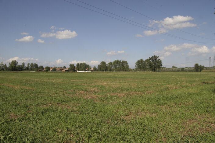 Fondo Roberto Bosio - Parco Agricolo Sud Milano - Settala - Paesaggio - Agosto 2006